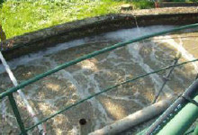 BioAktiv-Z voor waterzuiveringsinstallaties